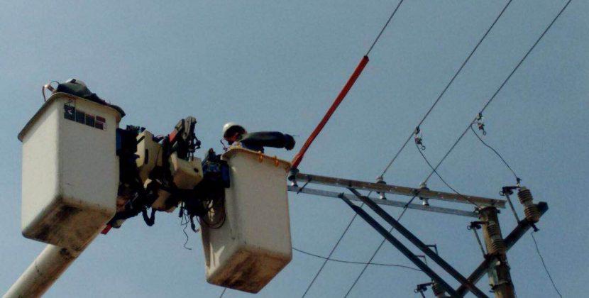 Realizan mantenimientos en el  circuito Buenavista