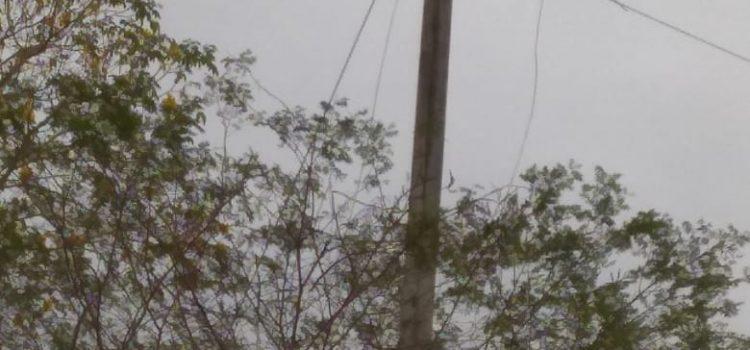 Hurtan 435 metros de redes de energía  en jurisdicción de Sabanalarga