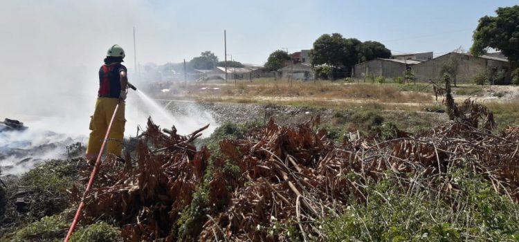 Autoridades reportan incendios forestales en el Atlàntico