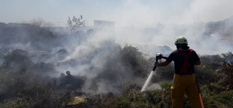 En el Atlántico se han registrado 60 incendios forestales
