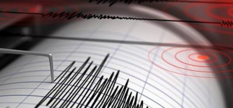 Fuerte sismo sacudió a Colombia, Perú y Ecuador