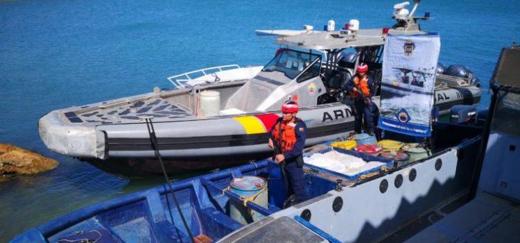 Armada incauta una tonelada de cocaína en la Alta Guajira